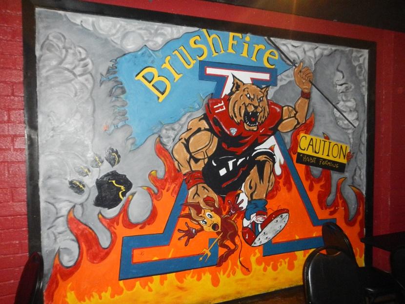 2016-2-3-brushfire-2