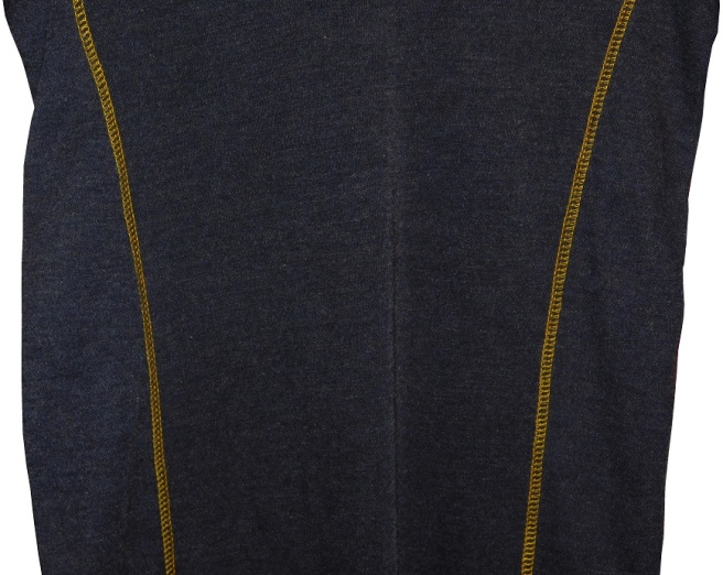 brownshirt-blogo